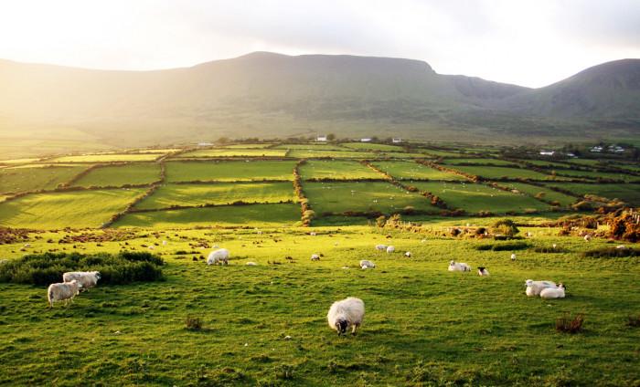 Ирландский пейзаж в «глубинке»