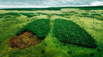 В каком государстве найти самую чистую экологию, лучшую медицину и благоприятный климат? Рейтинги стран мира — 2015