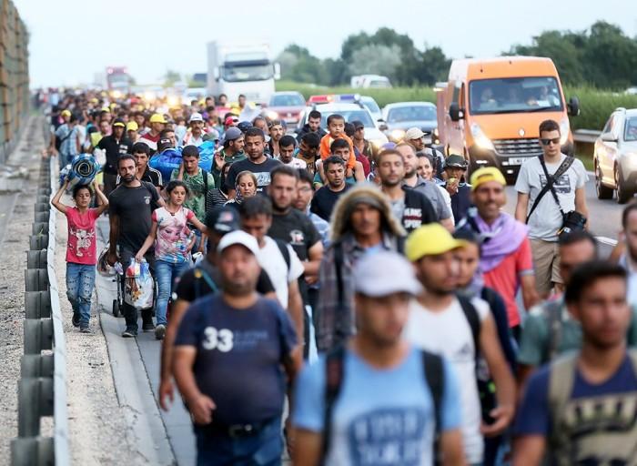 Иммигранты в Дании
