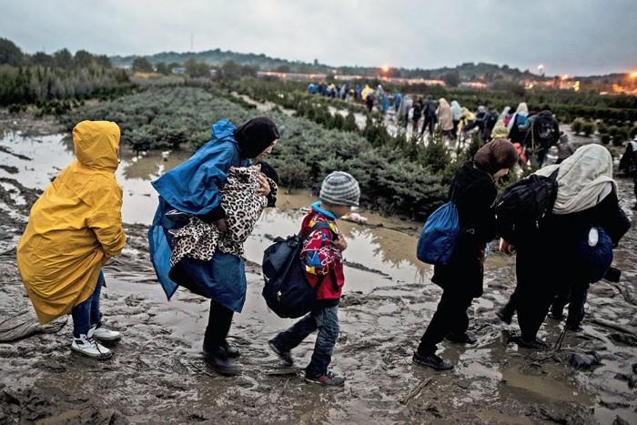 Сирийские беженцы стремятся попасть в Словению