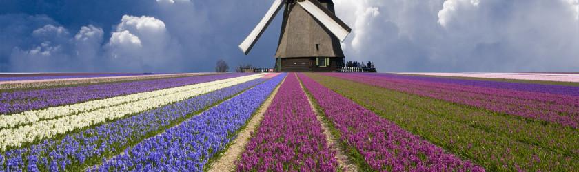 Мельница в Нидерландах
