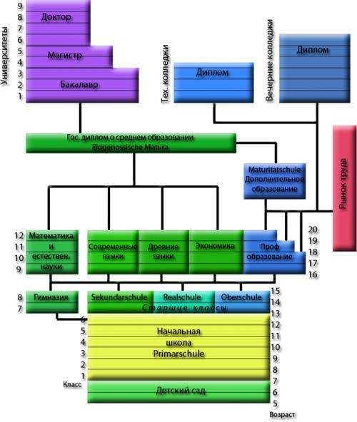 Краткая схема устройства образования в Швейцарии