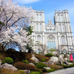 Университет Кунмин