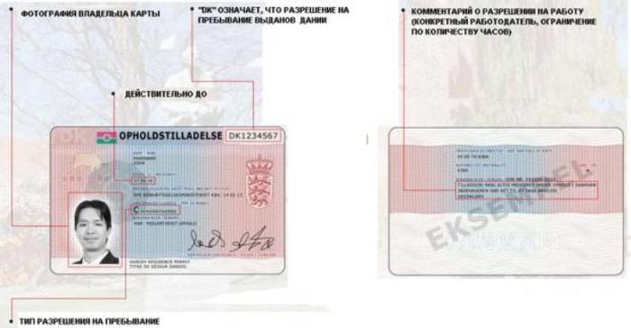 Вид на жительство и разрешение на работу в Дании
