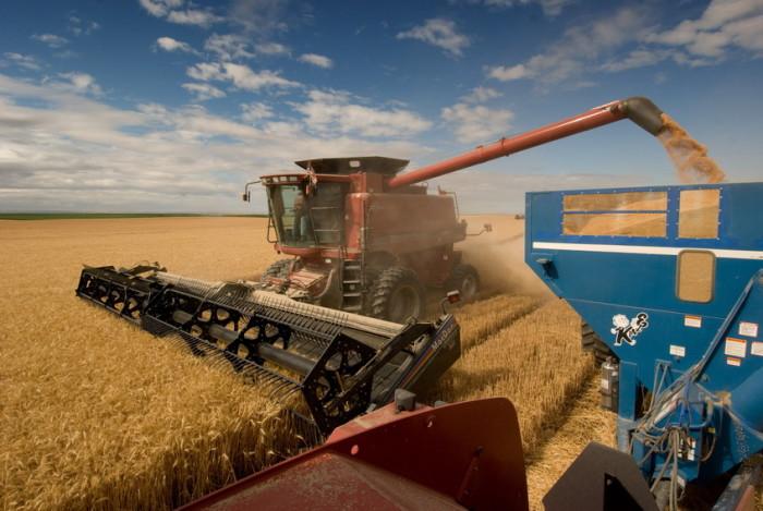 Уборка урожая в Дании