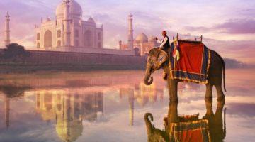 Работа в Индии для иммигрантов России и СНГ
