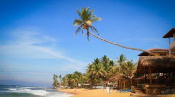 Особенности получения визы в Шри-Ланку