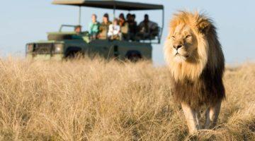 Получаем визу в ЮАР самостоятельно