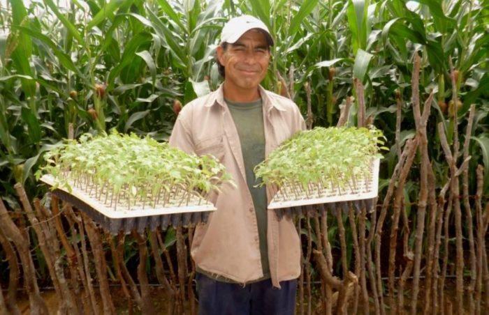 Работник агрофермы в Аргентине
