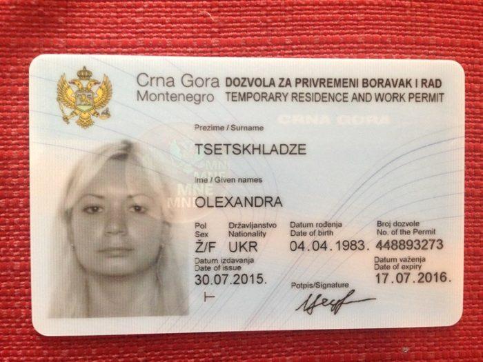 Вид на жительство Черногории