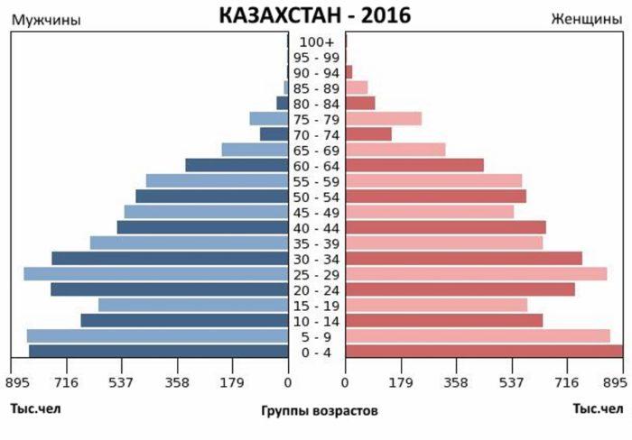 Гендерная диаграмма по возрастным группам