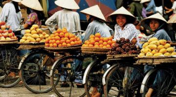 Виза во Вьетнам: порядок и особенности оформления