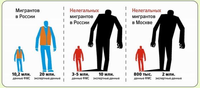 Легальная и нелегальная составляющие миграции в РФ