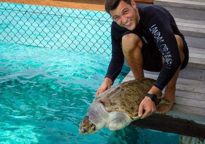 Волонтёр с черепахой