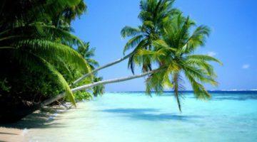 Нужна ли виза в Доминикану