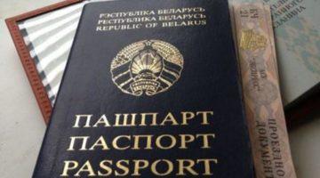 Оформление гражданства Беларуси: пошаговая инструкция, сроки, необходимые документы