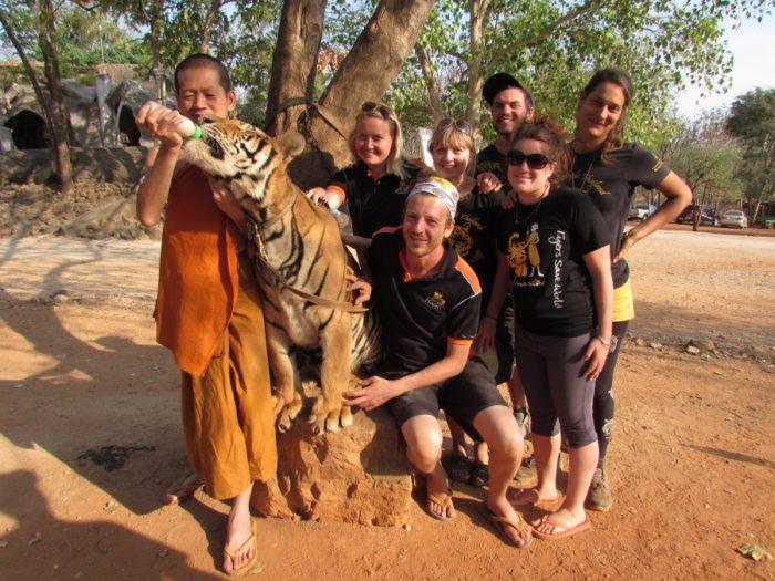 Таиландский монах с тигром и волонтёрами