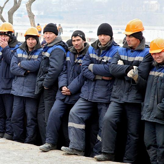 Трудовые иммигранты РФ