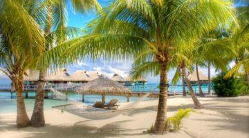 Нужна ли виза в Доминикану в 2019 году