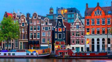 Родина тюльпанов: как получить вид на жительство в Нидерландах