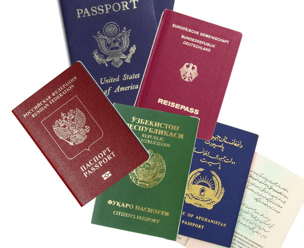 Какие документы для отказа от гражданства в консульство