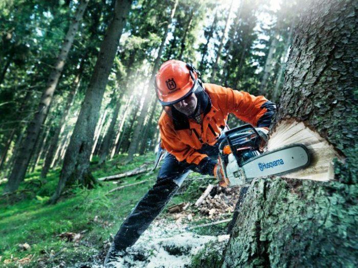 Заготовка леса в Финляндии