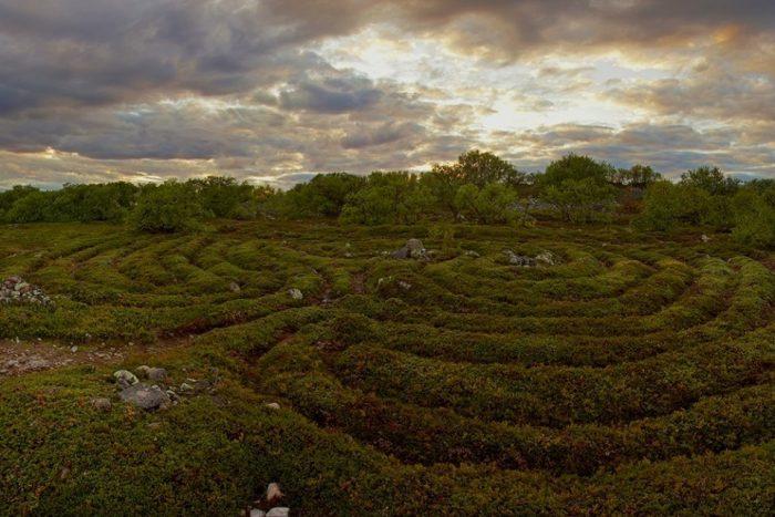 Фото лабиринтов Большого Заяцкого острова