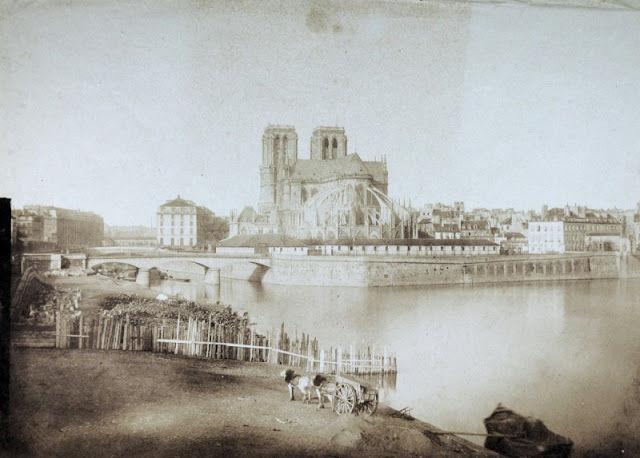 история собора парижской богоматери