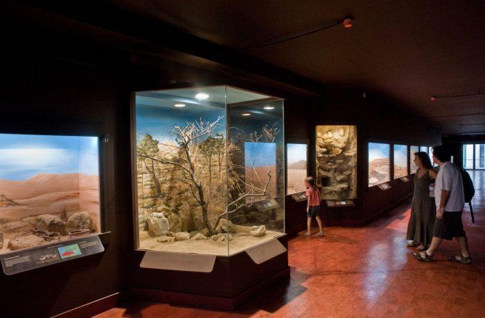 Музей естественной истории Крита