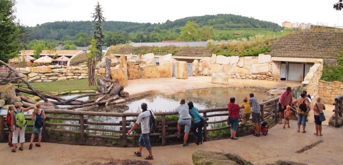 Вольер в Пражском зоопарке