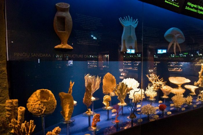 Морской музей Литвы
