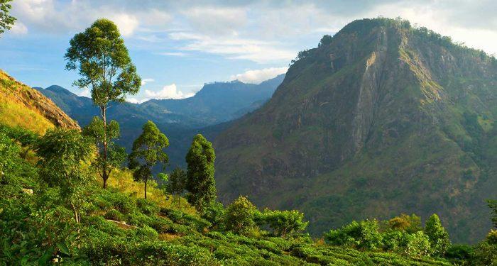 Гора Элла Рок на Шри-Ланке