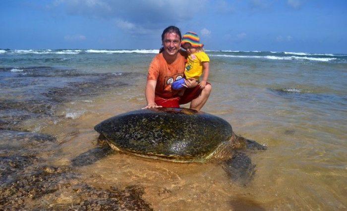 Морская черепаха на Шри-Ланке