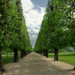 Королевские сады замка Розенборг