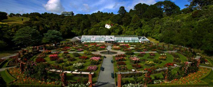 Ботанический сад Велингтона