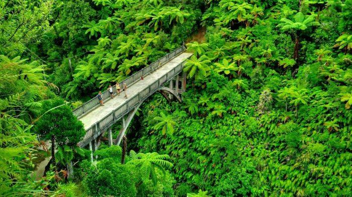 «Мост в никуда» в парке Фангануи