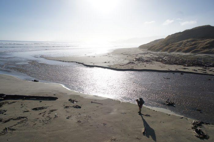 Песчаные пляжи заповедника