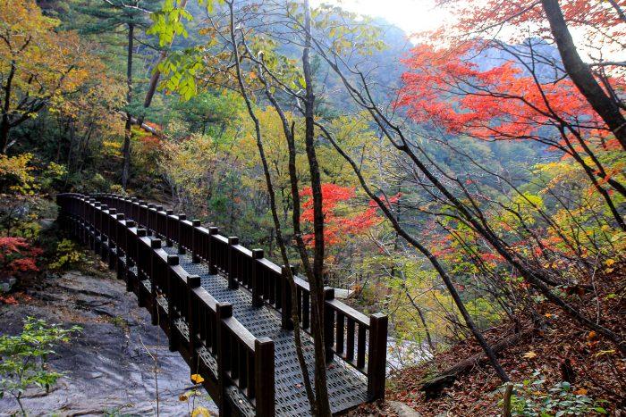 Осень в национальном парке Сораксан