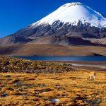 Равнина и озеро на фоне вулкана со снежной шапкой