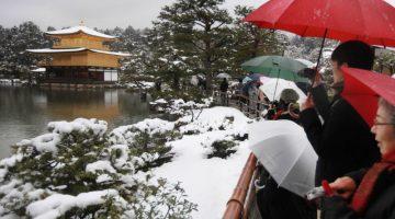 6 вещей, которые не стоит делать в Японии, чтобы не оказаться в неловкой ситуации